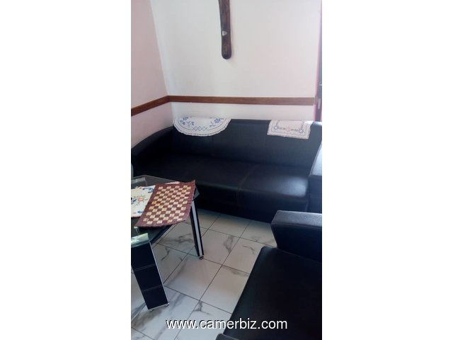 LOCATION MEUBLEES DOUALA CAMEROUN - 10047