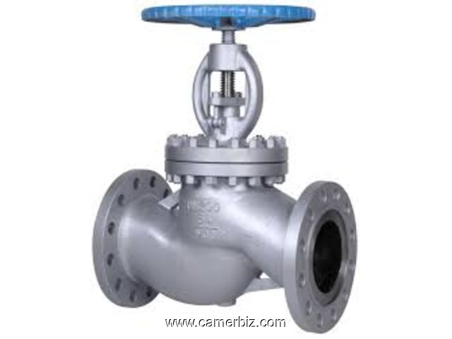GLOBE VALVES IN KOLKATA - 1662