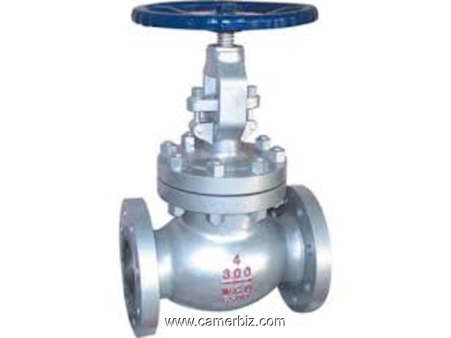 GLOBE VALVES SUPPLIERS IN KOLKATA - 1664