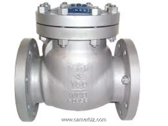 CHECK VALVES IN KOLKATA - 1677