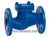 CHECK VALVES SUPPLIERS IN KOLKATA - 1679