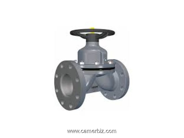 DIAPHRAGM VALVES DEALERS IN KOLKATA - 1687