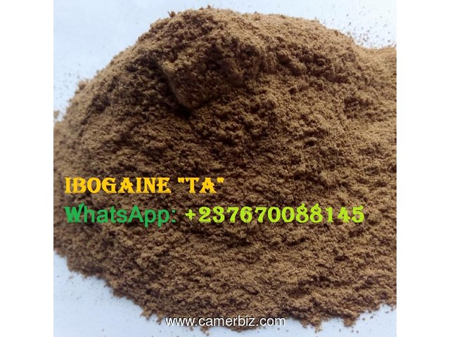 Buy High Quality Iboaine Products - 2599