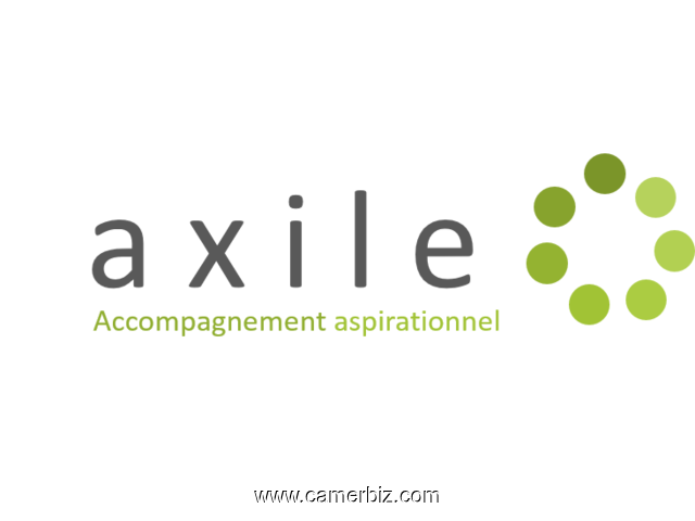 AXILE France offre d'emploi  - 3132