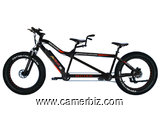 Addmotor MOTAN M-250 750 Watt Electric Tandem Bike