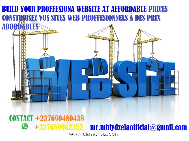 Professional and affordable websites in cameroon - 3315