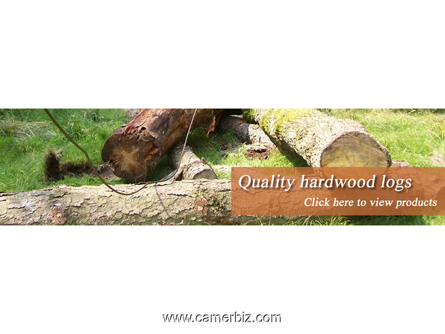 Buy Hardwood Flooring | African Round Wood Logs For Sale - 3337
