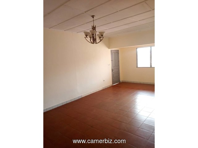 appartement 02 chambres a louer biyem-assi - 3546