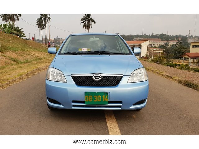 Super Belle 2005 Toyota Corolla Runx (Allex) Full Option - 4203