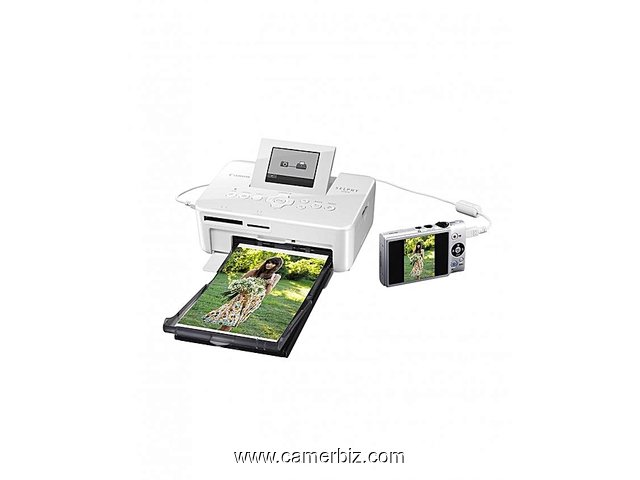Imprimante Photo SELPHY CP820 - Blanc - 4772