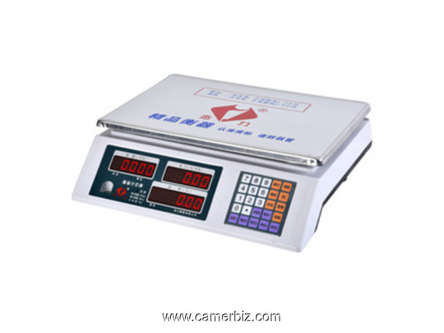 BALANCE DIGITAL PRICE COMPUTING SCALE - 4810