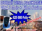 VISA + BILLET D'AVION