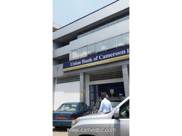 AUDITEUR INFORMATIQUE chez UNION BANK OF CAMEROON à Douala - 5746