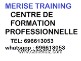 FORMATION GRATUITE A MERISE TRAINING