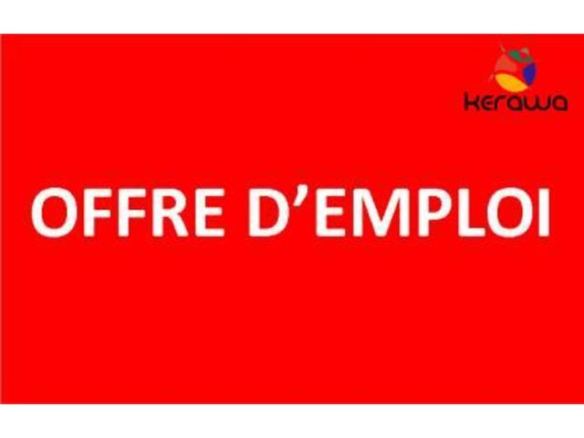 Nicety International Office Cameroun (Societe anglaise) recrute niveau CEP, BEPC, Probatoire, BAC  - 721