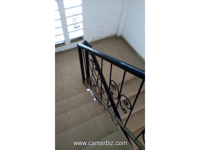 apartments for rent Log Pom Douala - 7604